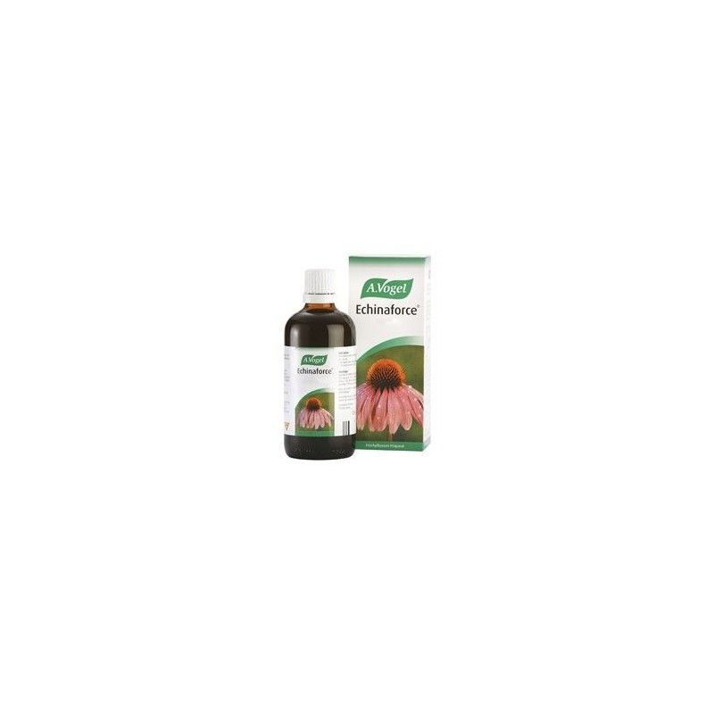 Echinaforce Gotas, 100 ml - A. Vogel Bioforce
